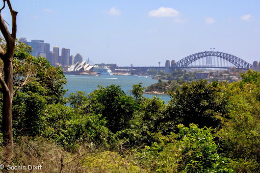 Aussie 5: Sydney Zoo, Bondi Beach and the New Year Fireworks