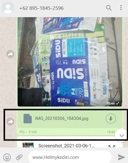 kirim foto original diwhatsapp3