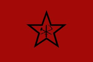 Paetel, Gruppo dei nazionalisti Social Rivoluzionari