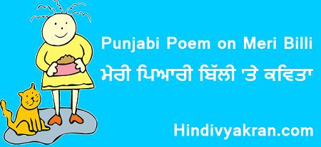 "Punjabi Poem on ""Cat / Meri Pyari Billi"",  ""ਮੇਰੀ ਪਿਆਰੀ ਬਿੱਲੀ 'ਤੇ ਕਵਿਤਾ"" for Kids"