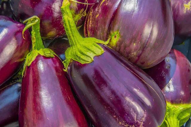 Food To Never Eat  Brinjals Or Eggplant