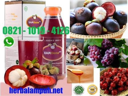 herbal ampuh jantung koroner, herbal penyakit jantung koroner,  jantung koroner bisa sembuh, xamthone plus