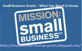 Free Small Business Start Up Grants Money Online Roved Provide Restricted