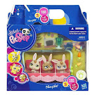 Littlest Pet Shop Petriplets Rabbit (#1333) Pet