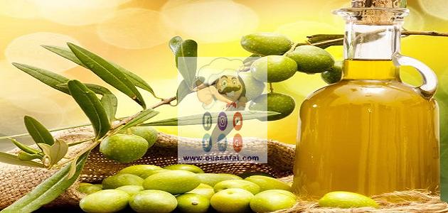 فوائد زيت الزيتون للصحة والجمال الجزء الأول