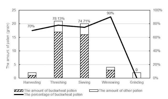 Pollen dispersal in traditional processing of buckwheat