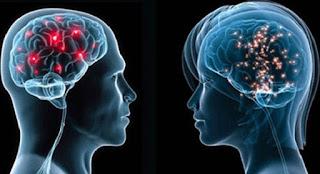 الفرق بين العقل الواعي والعقل اللاواعي ..