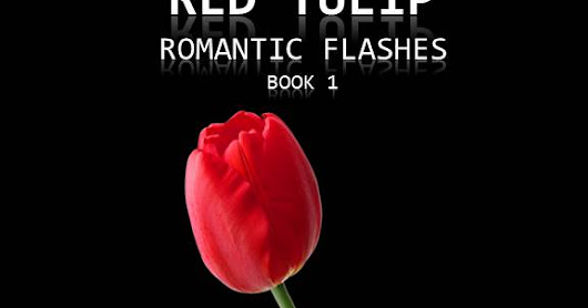 The Second Chapter from Victoria Adams' Episodic Romance - Red Tulip #episodic #romance #daryldevore