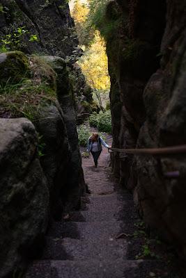 Malerweg Etappe 7 | Von Kurort Gohrisch bis Weißig | Wandern Sächsische Schweiz | Pfaffenstein – Festung Königstein 05