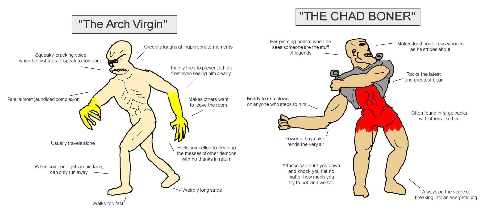 The Arch Virgin vs. The Chad Boner
