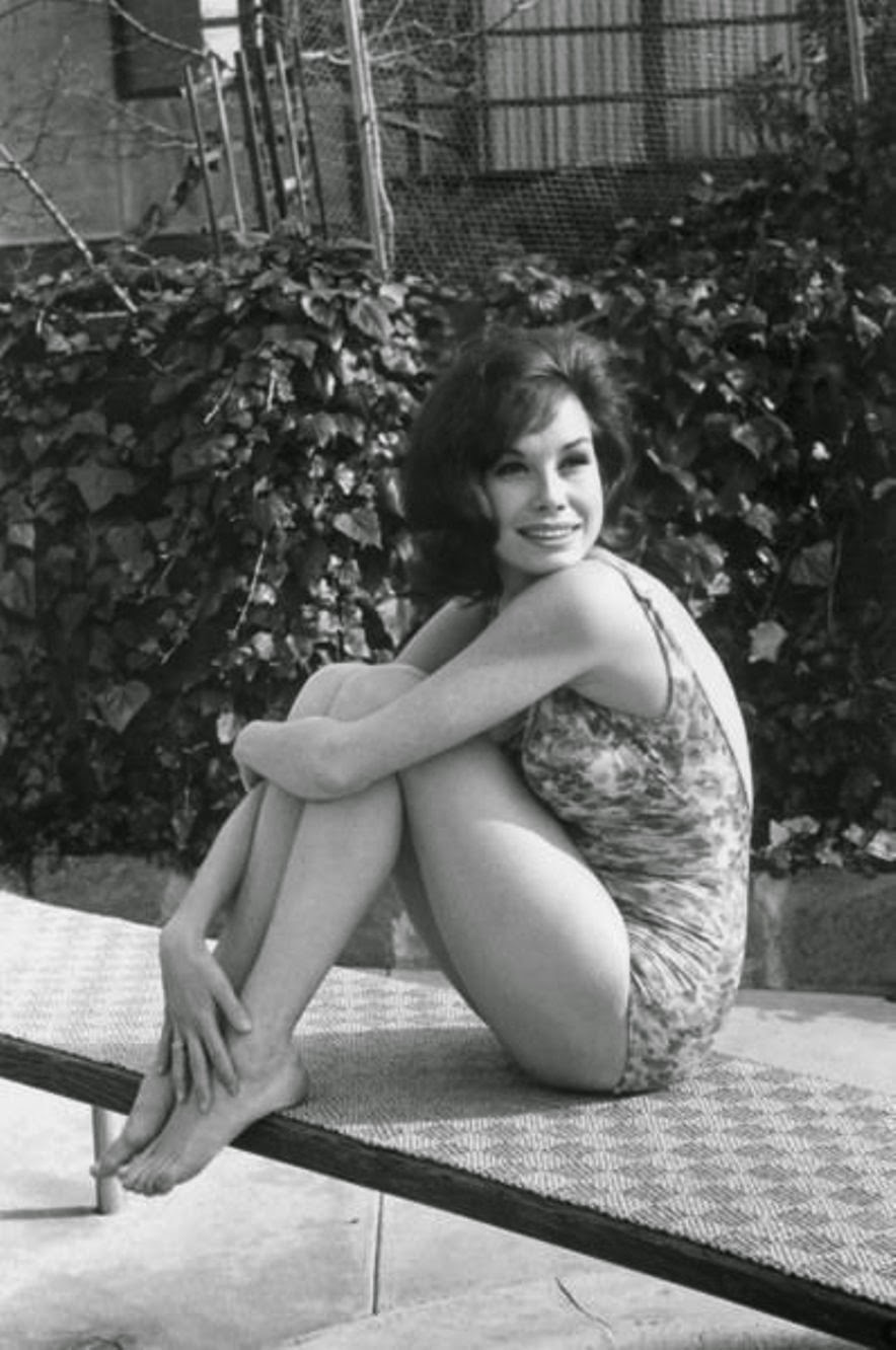 Celebrity Bio News Fashions Movies Mary Tyler Moore Profile Wallpaper Images Photos