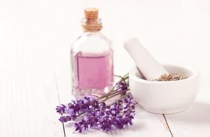 parfum lavender