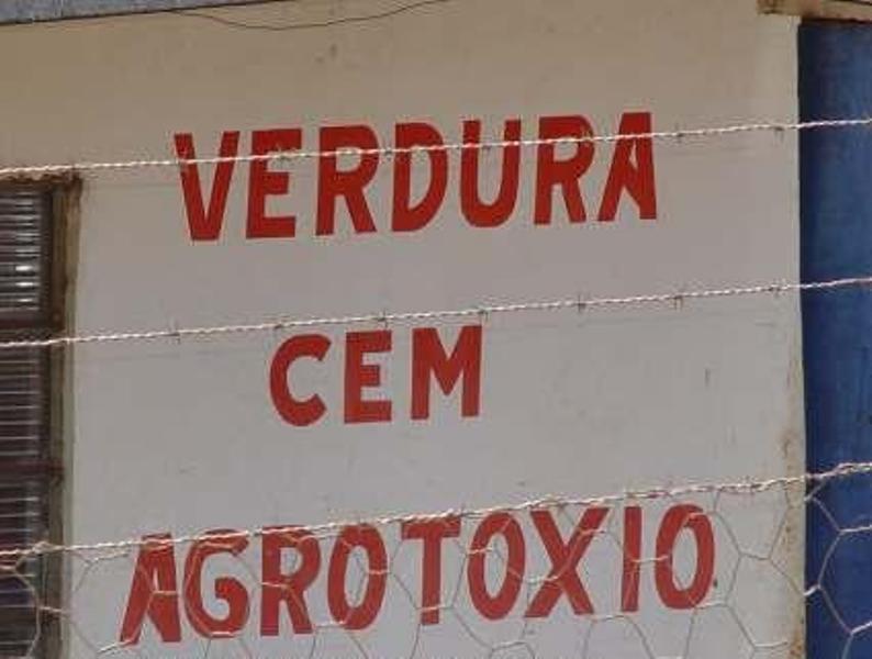 Resultado de imagem para placas com erros de portugues