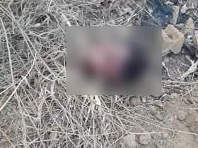 Jogador foi encontrado morto sem cabeça perto de um campo de futebol
