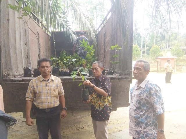 PTP Nusantara III Kebun Torgamba Adakan Penanaman Kembali Areal Konservasi