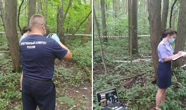 Тело пропавшего егеря нашли в лесу, и страшное видео с телефона раскрыло, какой смертью он погиб