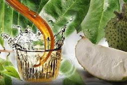 7 manfaat rebusan daun sirsak untuk kesehatan tubuh