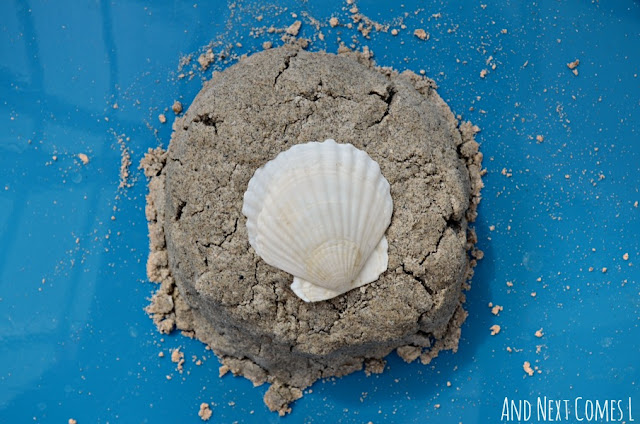Close up of sand dough with seashell