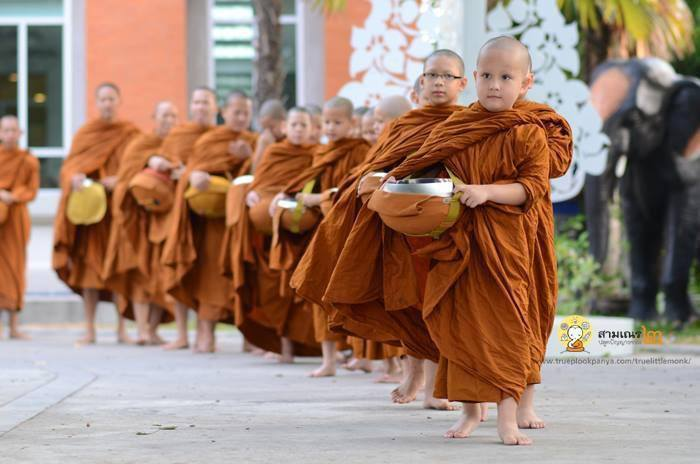 north prairie buddhist single men Meet thousands of local singles in the north prairie, wisconsin dating area today find your true love at matchmakercom.