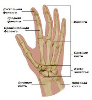 Хирургия Кисти в Харькове, Харьковская городская клиническая больница №31