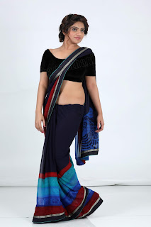 sheril virani in saree55