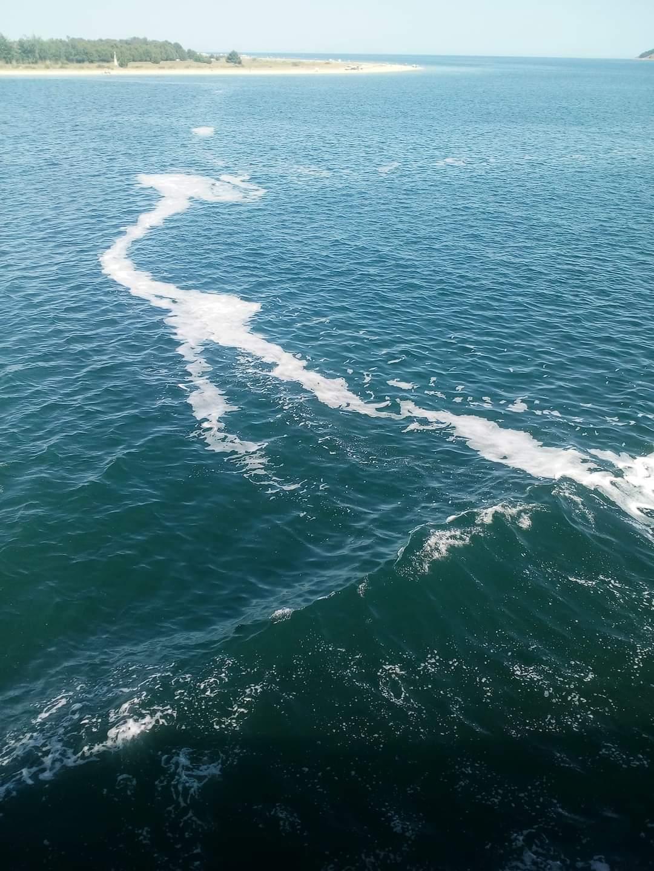 Μικροποσότητες βλέννας σε ακτές της Θράκης