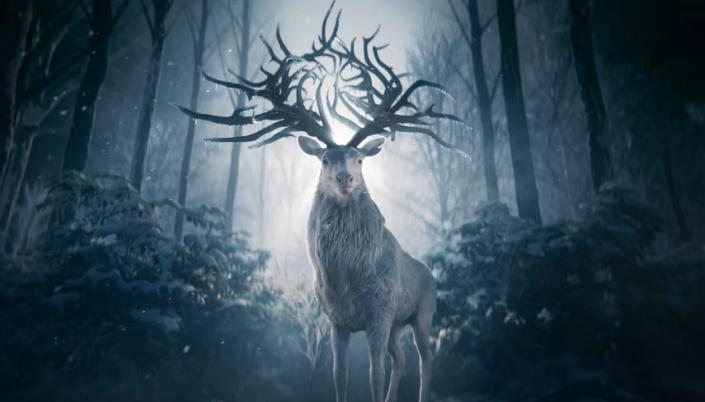 O fundo é uma floresta à noite em tons azulados e no centro tem um veado branco com nome chifres mas os chifres deles parecem com galhos e vão para várias direções com várias pontas.
