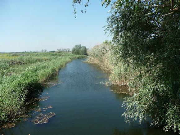 Ландшафтний заказник «Бакаї». Канали