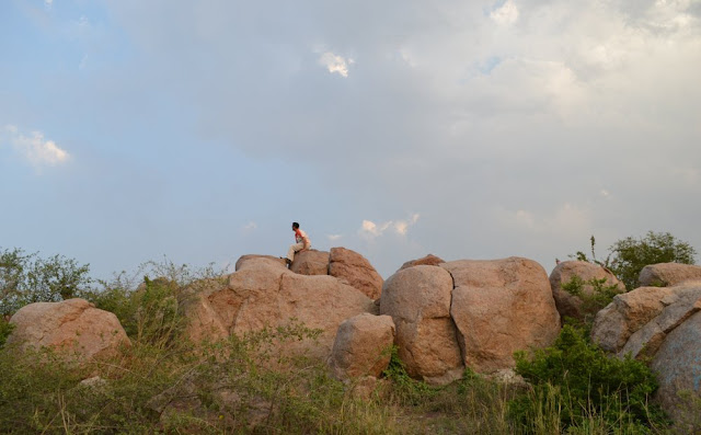 Parthasarthy Rocks JNU