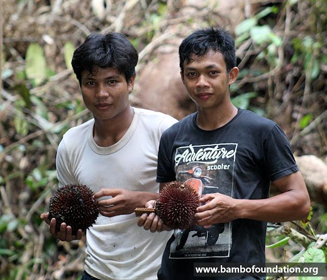 Durian Merah Langka Kalimantan