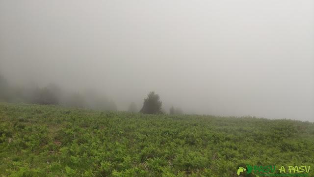 Niebla en el Collado de les Caldes
