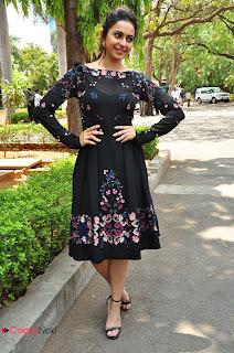 Actress Rakul Preet Singh Pictures in Short Dress at Sarrainodu Press Meet  0146.JPG