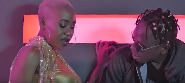 VIDEO | Amber Lulu Ft. Country Boy – WATAKOMA | Watch/Download