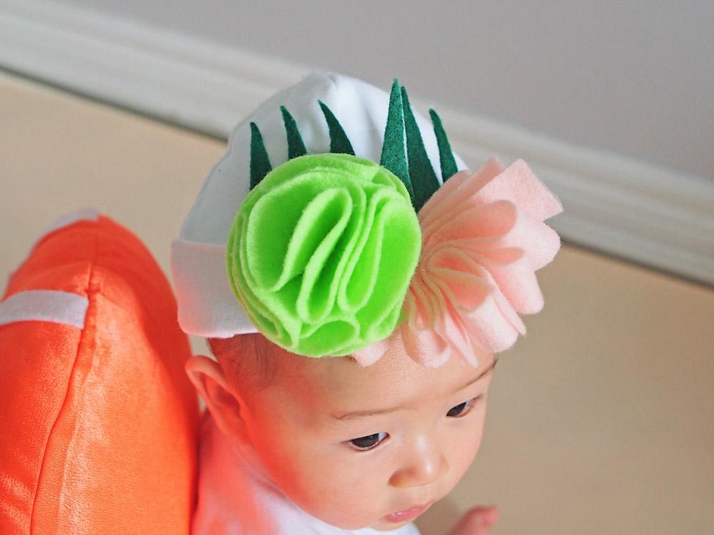 DIY Sushi Baby Halloween Costume