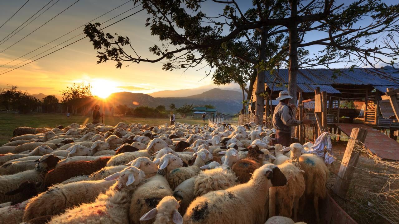 Perbuatan Yang Paling Dibenci Rasulullah ﷺ: Foto oleh Quang Nguyen Vinh dari Pexels