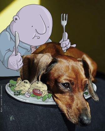 foto unik lucu kreatif foto asli yang dipadukan dengan kartun