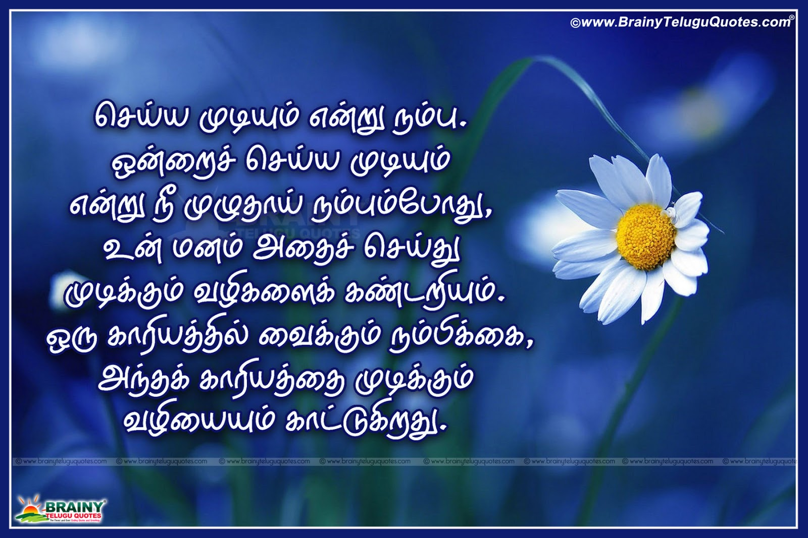 Good Night Motivational Quotes In English: Tamil Good Night Inspirational Greetings Wishes With Tamil