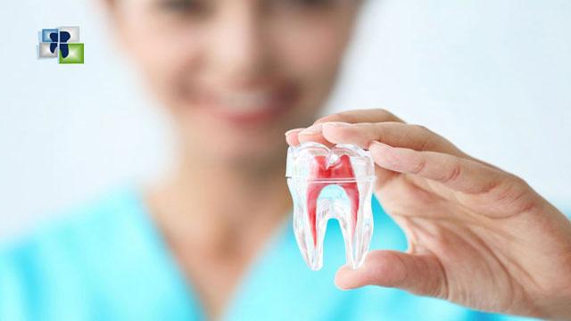 علاج لب الأسنان والحفاظ عليها