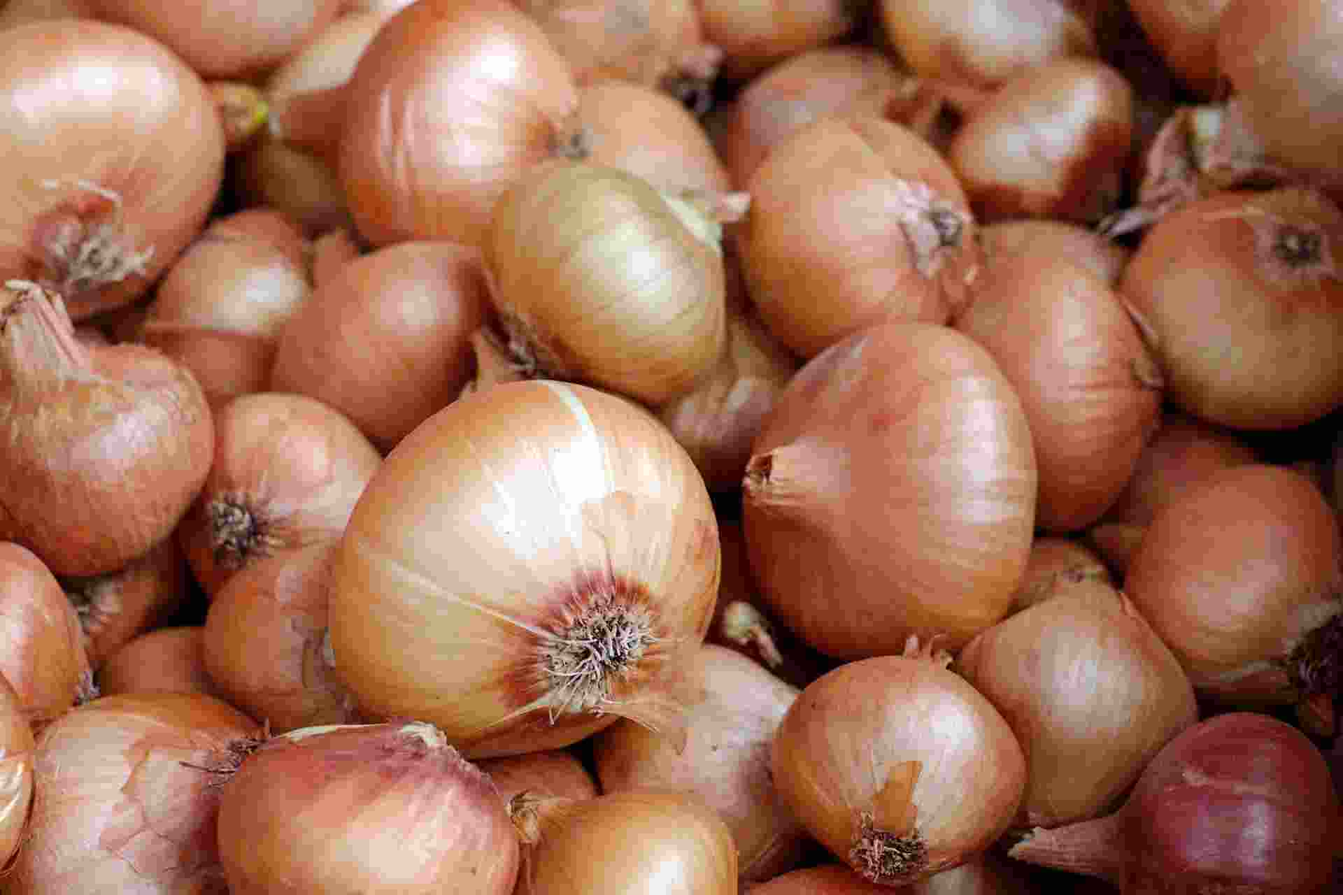 10 Influential Health Benefits of Onion