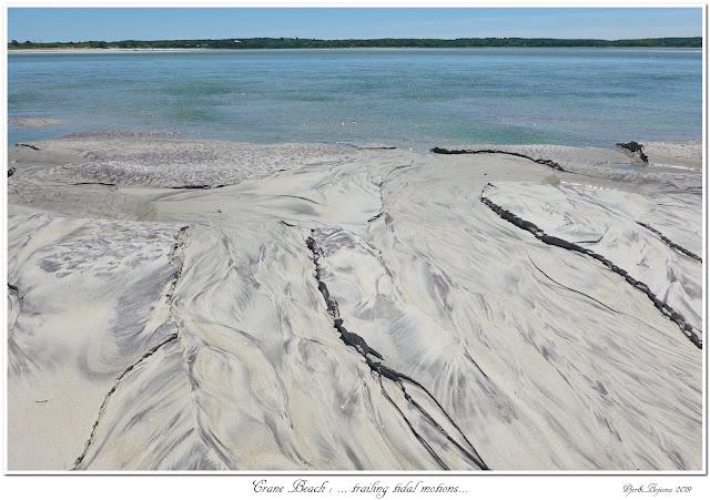 Crane Beach: ... trailing tidal motions...