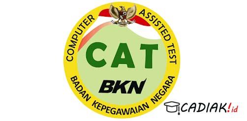 Cara Mendaftar Akun CAT BKN Dan Login