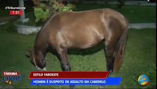 Homem é preso suspeito de assaltar pessoas a cavalo
