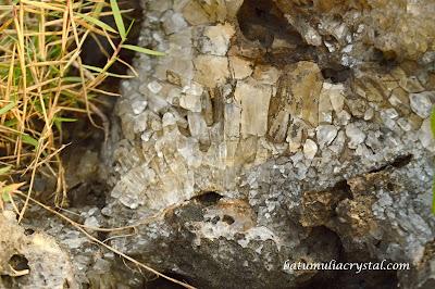 kristal Kalsit