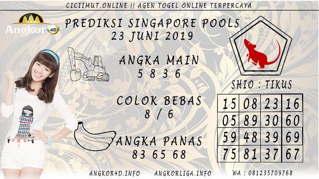 PREDIKSI SINGAPORE POOLS 23 JUNI 2019