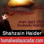 http://www.humaliwalayazadar.com/2015/10/shahzain-haider-nohay-2016.html