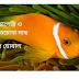 মেছোপেত্নি ও দুটি তেচোখা মাছ  //  সুদীপ ঘোষাল
