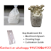 Buy a mushroom cultivation kit: biobritte