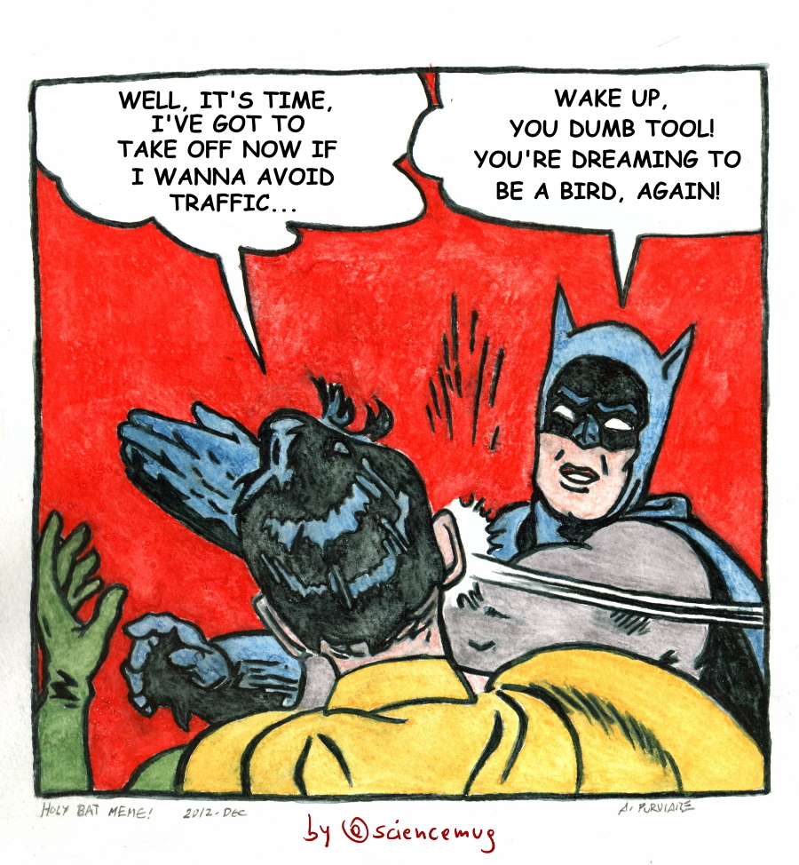 Batman and Robin meme 1 about American robins' earlier migration's timing (by @sciencemug)