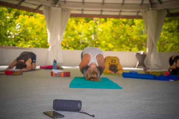 Yoga Classes and the Recommendations To The Beginners In Yoga Class Selection