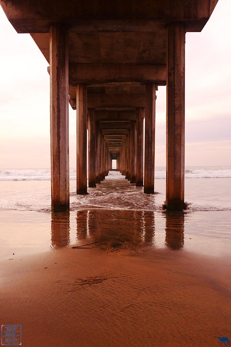 Le Chameau Bleu - Blog Voyage Californie USA - Voyage dans le sud de la californie USA - Plage de la Jolla